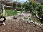 Pumaanlage (Zoo am Meer)