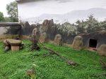 Anlage für Quastenstachler (Tierpark Bad Liebenstein)