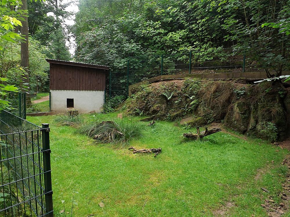 Anlage für Stachelschweine (Tierpark Bad Liebenstein)