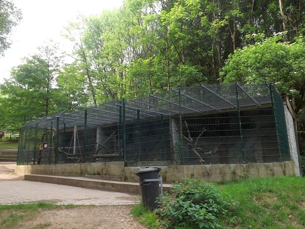Waschbärenanlage (Wildpark Hundshaupten)
