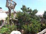Waschbärenanlage (Zoo am Meer)